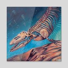 Clidastes - Acrylic by Finn Matthews
