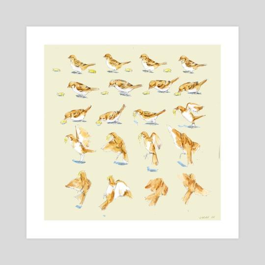 Bird Flying Frames by Sarah Oh
