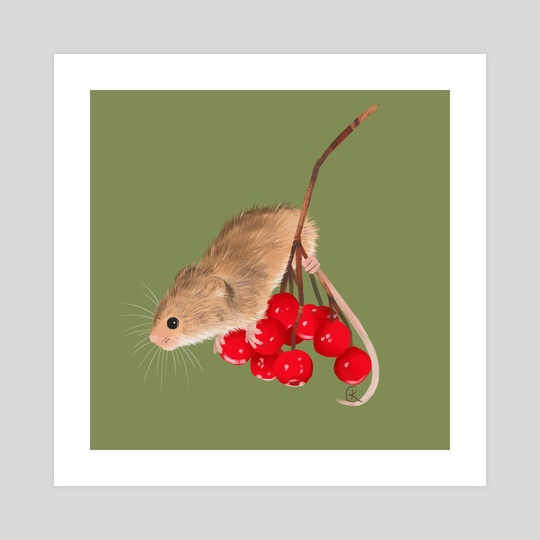 Harvest Mouse by Kit Cooper