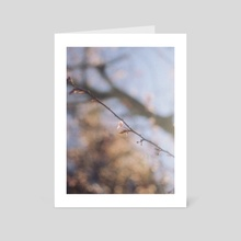 Spring - Art Card by Noèlia Andrés