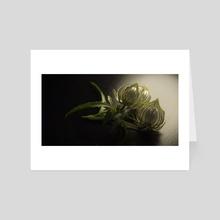 Flower of an hour - Art Card by Jean-Michel Bihorel