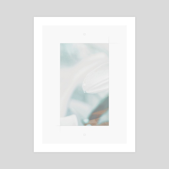 fragrant, numb. by Luna