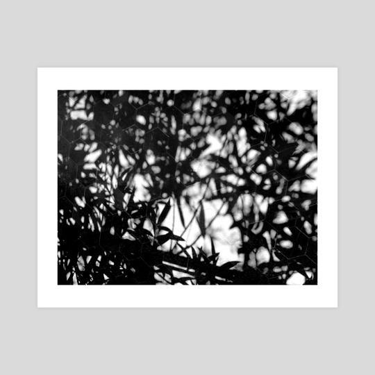 Shadows. by minkunoe