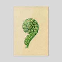 Fiddlehead Fern - Inktober 2019 #12 - Acrylic by Jessica French