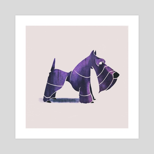 Scottish terrier  by ali saei