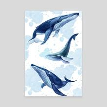 Whale - Canvas by Daria Doroshchuk