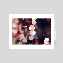 Little Pink Flowers - Art Card by Brianna Wickham