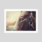 Equus - Art Print by Nicole Peterson