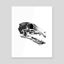 Shrew Skull - Acrylic by Syd Danger