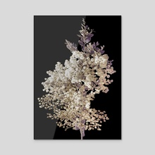 Botanical Motif Minimalistic Style Artwork - Acrylic by Daniel Ferreira Leites