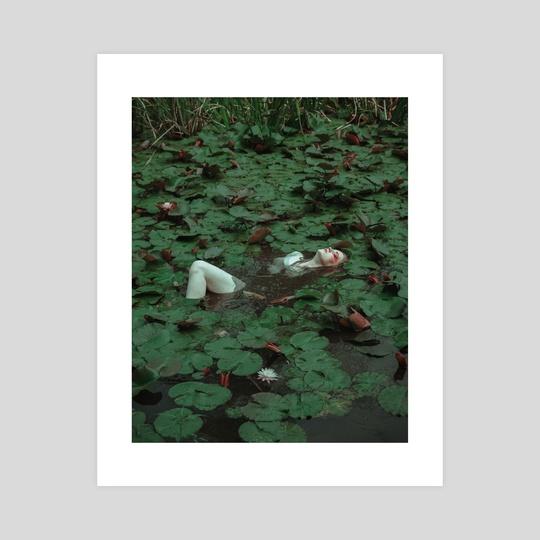 Alligator 3 by yuki.t_photography
