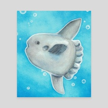 Ocean Sunfish - Canvas by Rivkah Winter