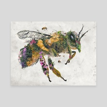 Must bee the honey - Canvas by Barrett Biggers