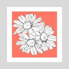 daisies - Art Print by Sammy