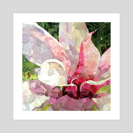 Magnolia  by Kelly Bloom