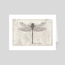 Anax Imperator - Art Card by Mike Koubou