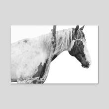 Spotted Horse  - Acrylic by Magda Opoka