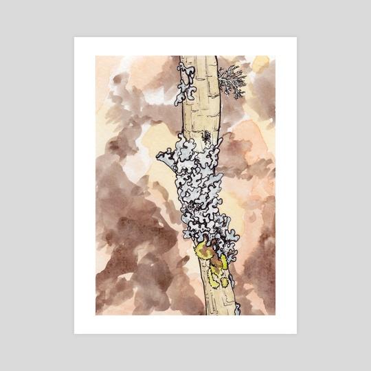 Moss3 by Nathaniel LaJeunesse