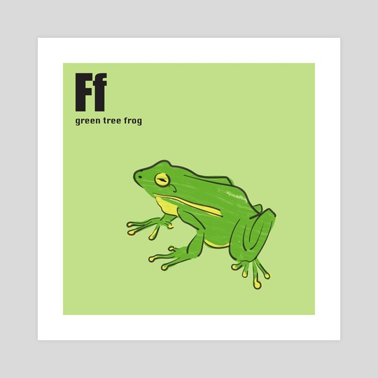 Green Tree Frog by Philip Painter