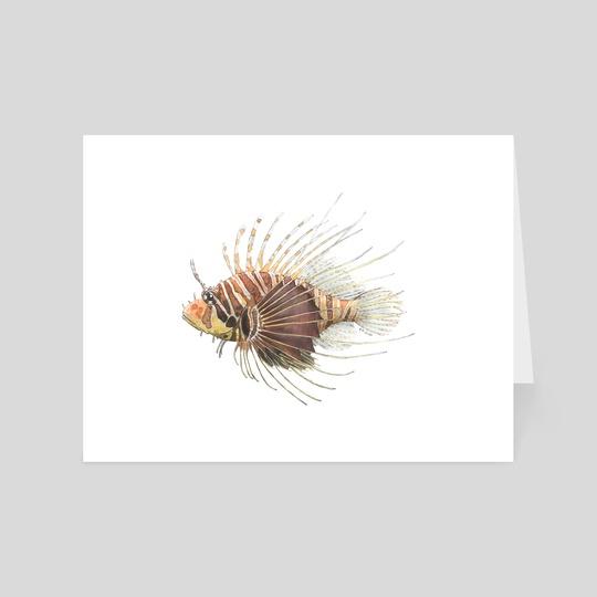 Pterois radiata - Radial Firefish (Lionfish) by Rene Martin
