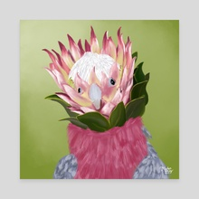 Galah Cockatoo + King Protea - Canvas by Meghan Keeley