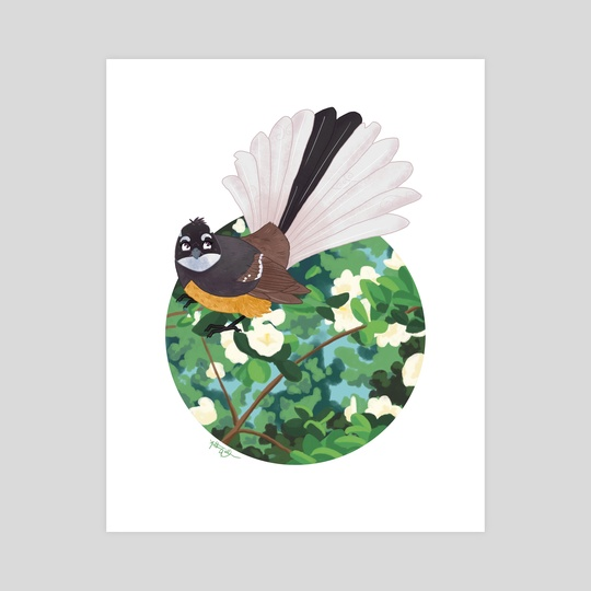 Fantail by Anthony Wallace