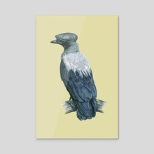 Hooded crow - Acrylic by Mikhail Vedernikov