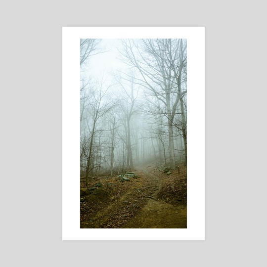 Foggy Trail by jeremy burgos