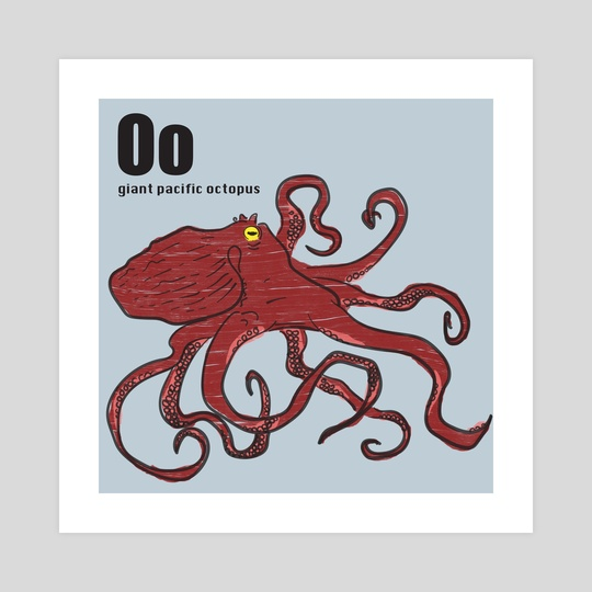 Giant Pacific Octopus by Philip Painter