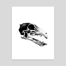 Shrew Skull - Canvas by Syd Danger