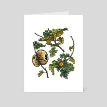 Oak Galls - Art Card by Emily Poole