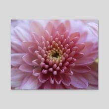 Pink Paradise - Acrylic by Sara M