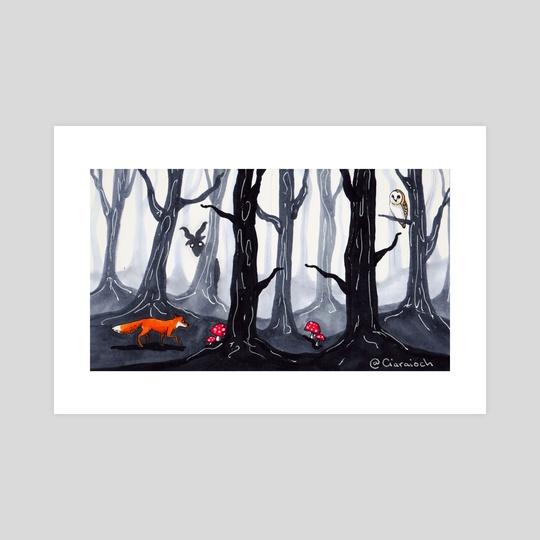 Forest by Ciaraíoch