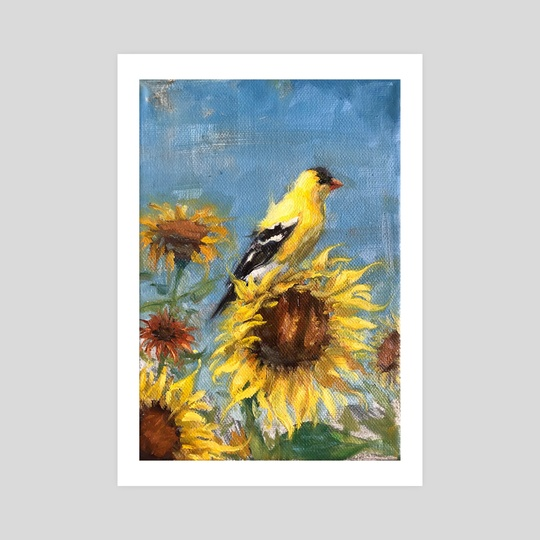 American Goldfinch Study on Sunflowers by Abby Hope