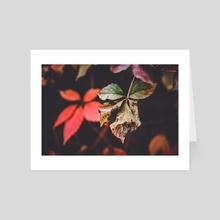 Autumn Is Here - Art Card by Nazar Hrabovyi