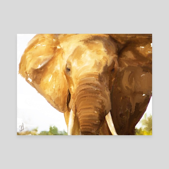 Elephant by Jovan Maletic