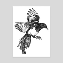 magpie study - Canvas by Mel Light