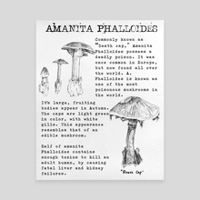 Amanita Phalloides (Death Cap) - Canvas by HeeJuice