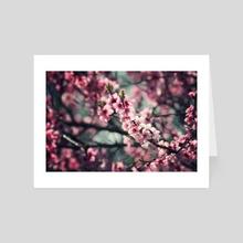 Spring - Art Card by Tóth Zoltán