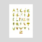 Circus Alphabet - Art Print by Hannah Ross