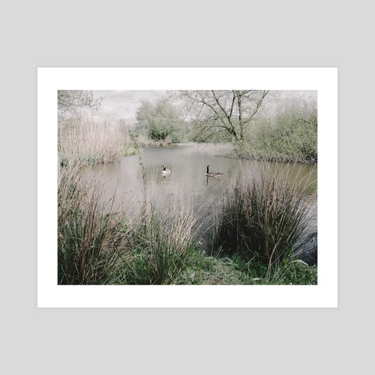English Pond by NoMads Photography
