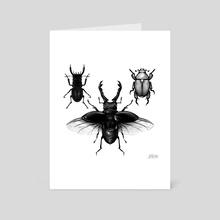 Beetles - Art Card by Jarhn Manning