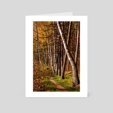 The Trail - Art Card by Illusorium