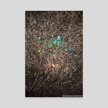 Rainbow grass - Canvas by Kimberly AF