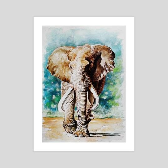 Elephant 1 by Robert Décurey