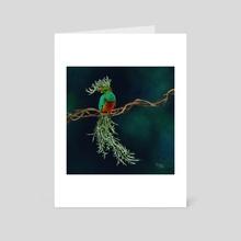 Resplendent Quetzal + Fish Hook Senecio - Art Card by Meghan Keeley