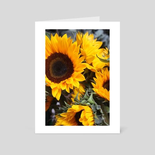 SunFlowers by Jazzmin Lanzo