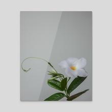 Flower Portrait - Acrylic by Aris Simmons