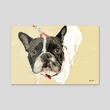 French Bulldog II - Acrylic by Wendi Strang-Frost