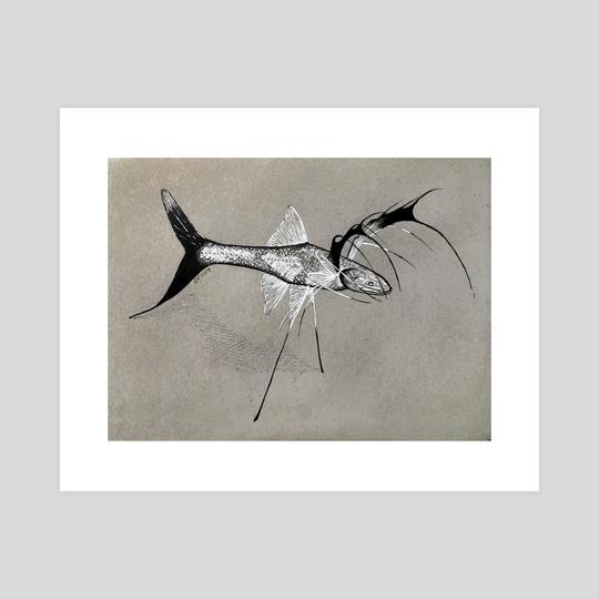 Tripod Fish - Ipnopidae by Rene Martin
